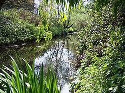 Yeading Brook - Ruislip Gardens.jpg