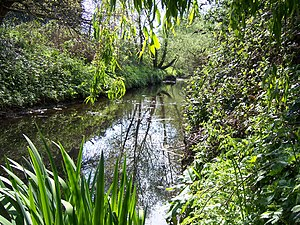 Yeading Brook - The Yeading Brook flowing through Ruislip Gardens