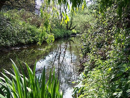 Yeading Brook - Ruislip Gardens