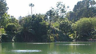 Self-Realization Fellowship Lake Shrine - Image: Yogananda Center Large Waterfall