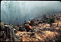 """Oklahoma Hills"", April 1969 - 50065376198.jpg"