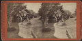 'Hollywood,' Residence of Mr. John Hoey, from Robert N. Dennis collection of stereoscopic views 2.png