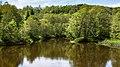 Örekilsälven downstream from Kviström in Munkedal 8.jpg