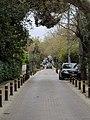 Οδός Λεβίδου 7899.jpg