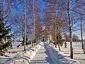 Березовая алея к Свято-Николаевской церкви от звонницы в Диканьке зимой.jpg