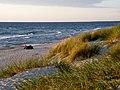 Вид на Балтийское море от поселка Морское.jpg