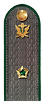 Государственный советник РФ 3 класса ФСПП.png