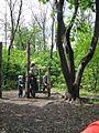 Дендрологічний парк 127.jpg