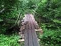 Деревянный мостик в Конча-Заспе - A wooden bridge in Koncha-Zaspa - panoramio.jpg