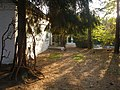 Медпункт - panoramio (1).jpg
