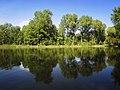 Озеро у Ворзелі.jpg