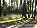 Пам'ятне місце масових страт громадян у період націстської окупації в роки ВОВ — Бабин Яр, Сирецький парк.JPG
