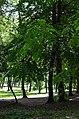 Парк Берёзовая роща в Киеве. Фото 16.jpg