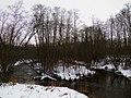 Речка Лауце Lauces upe ziemā - panoramio.jpg