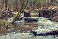 Річка Іловиця 04.jpg