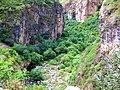 Որոտան գետի կիրճ.jpg