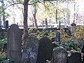 בית הקברות היהודי בקרקוב - קברים (10).jpg