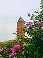 برج گنبد قابوس ۱.jpg