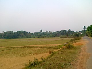 Jagatsinghpur district District of Odisha in India
