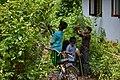 കുമ്മാട്ടി Kummattikali 2011 DSC 2605.JPG