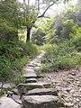 古道石径 - panoramio.jpg