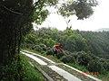 杭州.登十里郎当全程(龙井茶室-棋盘山...五云山...九溪) - panoramio (7).jpg