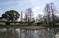 食とみどり技術センター 緑化樹見本園 2014.4.02 - panoramio (1).jpg