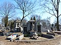 - Cmentarz Nowofarny - panoramio (5).jpg