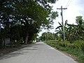 0248jfVentinilla Cabayaoasan Nancamarinan Fields Roads Paniqui Tarlacfvf 12.JPG