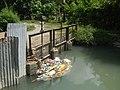 0296Views of Sipat irrigation canals 22.jpg