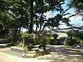 05704jfMidyear Orchid Plants Shows Quezon Cityfvf 29.JPG