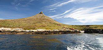 Jason Islands - Grand Jason in the Jason Islands, Falkland Islands