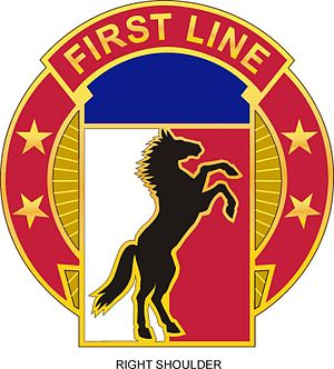 113th Sustainment Brigade (United States) - Image: 113 Sust Bde DUI
