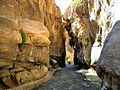 13 Wadi Bin Hammad Tropical Rain Forest Trail - Rock Formations - panoramio.jpg