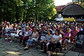 18.8.17 Pisek MFF Friday Evening Czech Groups 10792 (36514240872).jpg