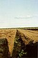 1990 Sittensen-Torfmoor 02.jpg