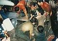 19950629삼풍백화점 붕괴 사고119.jpg