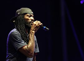 2013-08-23 Chiemsee Reggae Summer - Junior Kelly 3664.JPG