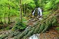 2015-05-06 17-05-48 cascade-goutte-des-saules-plancher-les-mines.jpg