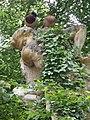 2015-05-29 Paris parc 15.jpg