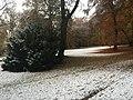 20161109 MunichCity 6460 (34360987303).jpg