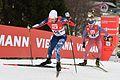 20161218 FIS WC NK Ramsau 0683.jpg