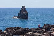 2016 Con. Funchal. Madeira Portugal-9.jpg