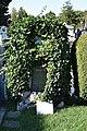 2017-08-147 275 Friedhof Hietzing - Ludwig Moser.jpg