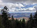 2019-10-27 12 05 56 View southeast through Red Spruce forest from the Whispering Spruce Trail just southeast of Spruce Knob in Pendleton County, West Virginia.jpg