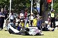241000 - Paralympic Arts Festival show cows - 3b - 2000 Sydney festival photo.jpg
