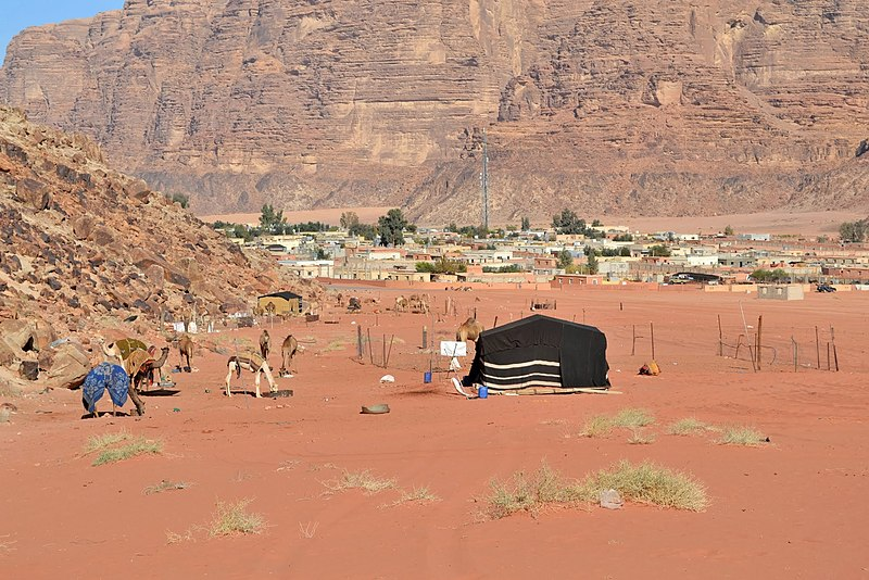 File:27 Lawrence of Arabia Spring - Camel Holding Place near the Trail - panoramio.jpg