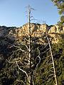 292 Bosc i serra de Queralt.jpg