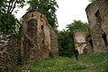 365viki Ruiny zamku Świecie. Foto Barbara Maliszewska.jpg