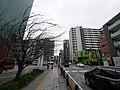 3 Chome Kotobukichō, Atsugi-shi, Kanagawa-ken 243-0003, Japan - panoramio (9).jpg
